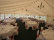 pink marquee layout